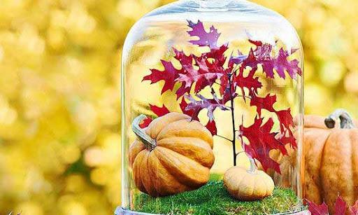 Ősszel is egészségesen és színesen étkezhetünk!