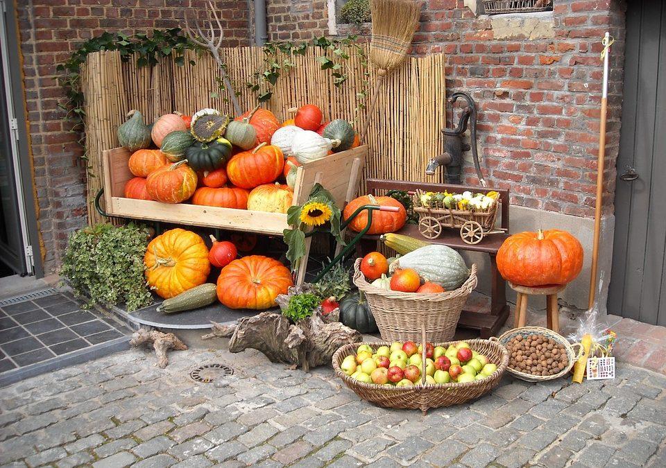 Vitaminok és testmozgás ősszel is!